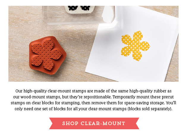 clear_mount_stamps